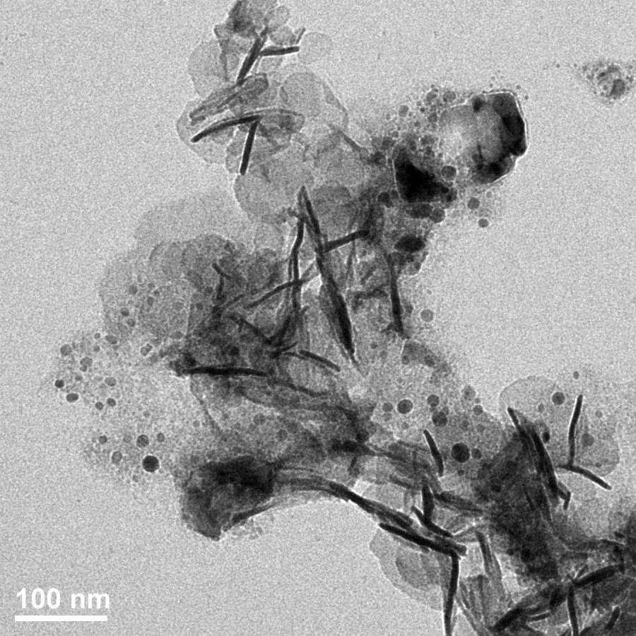 磁性粉末/液体透射电镜(TEM)