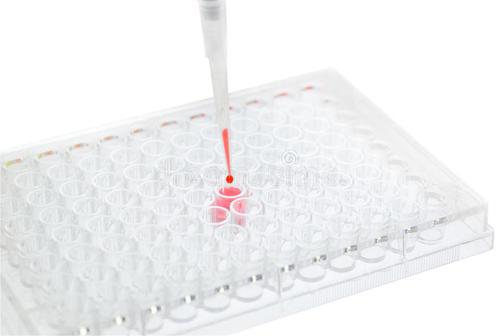 ELISA酶联免疫吸附测试